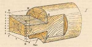 Схема разметки «лапы»